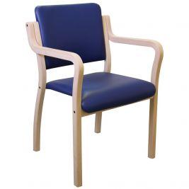 GENESIS SEAT W/ARMS