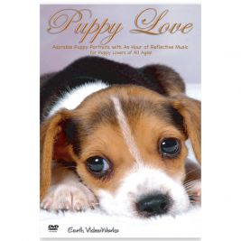 Puppy Love DVD