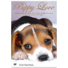 Puppy Love DVD