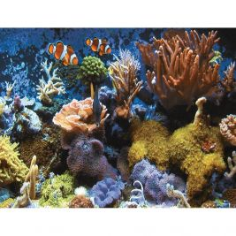 Very Large 48 Piece Puzzles Underwater