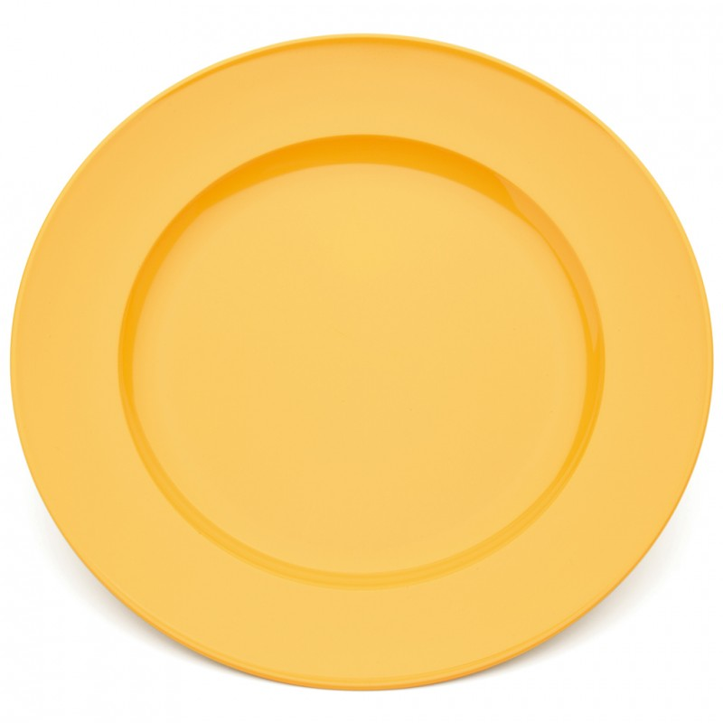 sc 1 st  Care Shop & Harfield Polycarbonate Dinner Plate 24cm