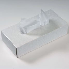 Large Economy Facial Tissues 1x100