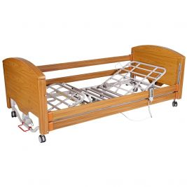 Care Professional Nursing Bed