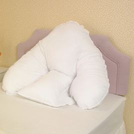 Batwing Pillow