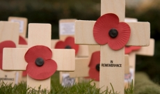 Commemorating Remembrance Day in Your Care Home